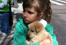 children with puppies / by Tracy ॐ Chou