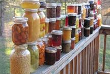 Canning Foods / by Ben Raschke