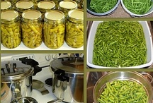 Canning or Freezing .....RECIPES / Recipes how to can and freeze foods / by MARY Peck