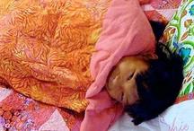 Parenting: Bedtime & Rest