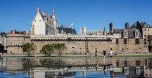 Pays de la Loire / Epingles pour la Loire-Atlantique, le Maine-et-Loire, la Vendée...