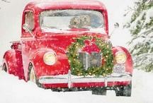 Holly, Balsam & Snow / by jessie