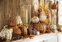 fall / by Rachel Carter
