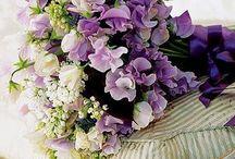 Flowers / by Rachel Carter