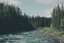 Beautiful Places / by Ashley Brooke-Dunsford