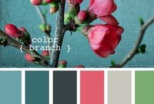 Color Pallettes / by Ashley Brooke-Dunsford