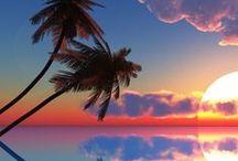 V♦️ Paradis