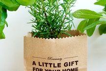 gift ideas / by anne walker miller