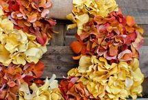 wreaths / by Michele Munger