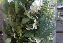 Herbs & Such