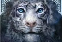 Tiger's Crush / All things related to the Tiger's Curse Series by Colleen Houck