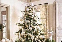 Christmas / by Amanda Mcadams