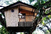{Tree House} / Lets live in the trees! / by Style by Jasmine