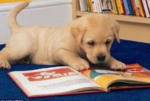WPL: Paws to Read / Cute animals + books = what's not to love?