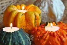 Autumn / by Kjirsten Worthing