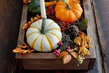 Thanksgiving Decorating / Decorating ideas for your Thanksgiving table or party.  / by Anne-Marie Nichols - This Mama Cooks! On a Diet