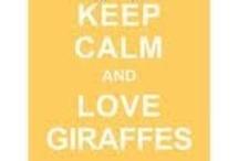 I ♥ Giraffes
