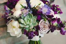 Fall wedding celebration! / Fall Wedding Celebration, for Janelle & Dale. Let's pin inspiration!