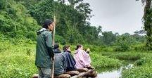 PEROU / Découvrir toute la beauté du Pérou et de ses différents milieux : la côte pacifique, la jungle amazonienne, les montagnes de la Cordillère, etc.