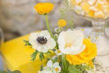 Hochzeit in Gelb / yellow wedding