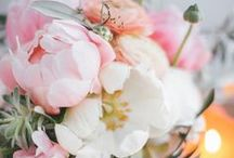 Pfingstrosen & Eukalyptus Hochzeit / peony & eucalyptus wedding / Graues Kraftpapier mit Pfingstrosen & Eukalyptuszweigen