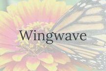 Wingwave / mit wingwave Blockaden auflösen, Stressbewältigung und Selbstmanagement I Entspannung I bilaterale Hemishärenstimmunlation I