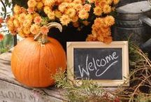 Fall Decor / For more fall ideas, check my other fall boards, Fall Decor Pumpkins Fall Outdoor Decor, Fall at the Beach,  Fall Cloches,Fall Crafts & Fall Tablescapes.