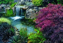 Garden Fountains &  Water Features / by Penny Thompson