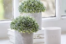 Nordic House - Faux Decorative Botanicals / Gorgeous faux decorative botanicals - so good, you would never know it wasn't real!