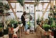 Greenhouses & Conservatories