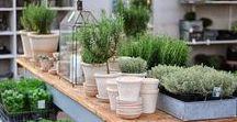 Garden Centers We LOVE