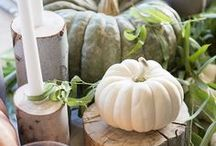 Farmhouse Fall decor and inspiration / My favorite finds for fall and Thanksgiving decor with a simple, modern, farmhouse feel. DIY & Entertaining.