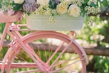 Bicicletas... / by Izabel Cristina