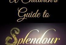 A Children's Guide to Splendour