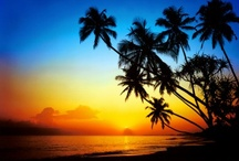 All Things Tropical  / All things tropical: foods, drinks, places, clothing, music....