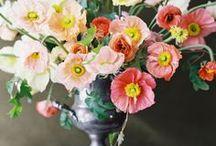 BOUQUET - Wedding Flower / by Christina Henson