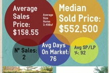 Baton Rouge Real Estate Infographics / by Bill Cobb