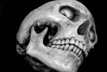 Bone Art - BW / by Mr. Gumby