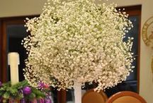 Baby's Breath Weddings / Baby's Breath is not just for Filler anymore! It's the starring flower in these weddings by Flower Duet! #FinishWithFlowers / by Flower Duet