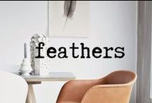 Feathers / by Margaux Tait