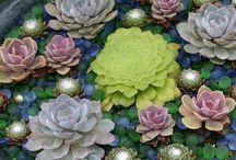 Plant Life / by Kari Strabo
