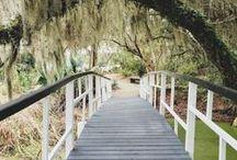 CHARLESTON, SC / Charleston, SC, USA the holy city full of romance and history