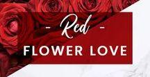 ORCHIDYA // Red Flower Love