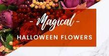 ORCHIDYA // Magical Halloween Flowers