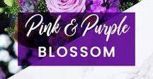 ORCHIDYA // Pink & Purple Blossom