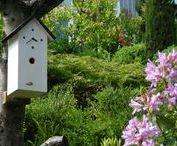 Garten / Neuheit aus dem Schwarzwald Rund 250 Jahre nach den ersten Schwarzwälder Kuckucksuhren ist ein völlig neues Produkt entstanden, die Schwarzwälder Nistkastenuhr. Was bei der Kuckucksuhr die namensgebende Besonderheit der mechanische Kuckuck ist, ist bei der Nistkastenuhr der Bereich Nistkasten für Vögel.