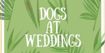 Dogs at Weddings / I'm a big fan of dogs at weddings, LOVE them. If you are a huge dog lover like me and love looking at pics of dogs at weddings then this is the board for you.