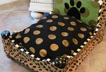 Pet Projects / by Angie Byerly