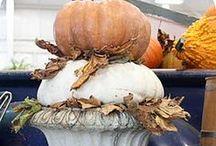 Fall Fling / by Liz Mussehl