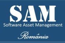 Software Asset Management / SAM Romania
